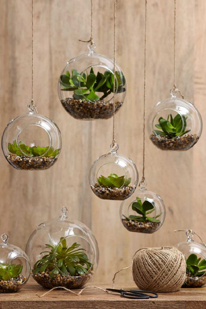 Best Indoor Garden Ideas Picture