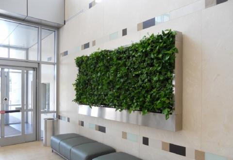 Best Indoor Garden Ideas Picture