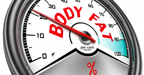 Handheld vs Scale Body Fat percentage Monitoring Picture