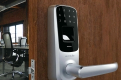 Keyless Entry Front Door - A Measure for Safety Enhancement or Theft Predisposition Picture