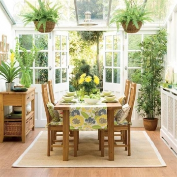 How To Give Your Indoor Plants a Better Life Picture