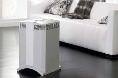 Permanent Filter vs. Replacement Filter Air Purifier - What to Choose and Why Picture