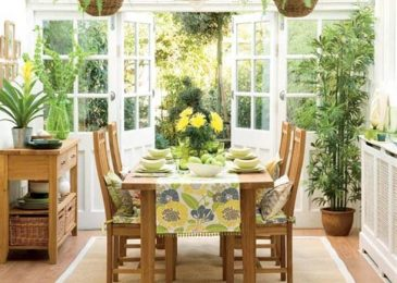 How To Give Your Indoor Plants a Better Life